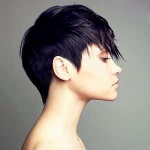 Short-hair-specialist-scottsdale
