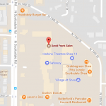 David-Frank-Salon-Map